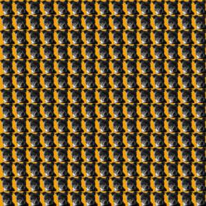Staffordshire Dog Tooth fabric design