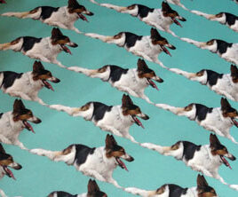 Gravy Border Collie Design in Blue