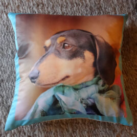 Picture of a Dachshund Portrait on a cushion with duck egg blue border sitting on rug
