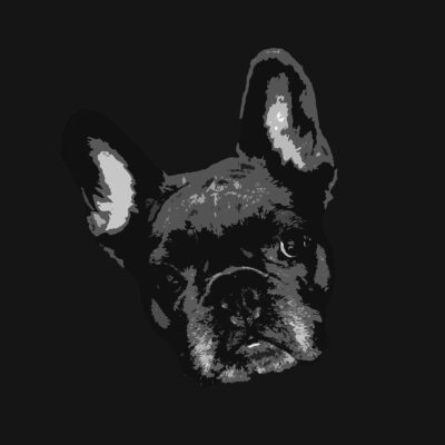 Pop Art Style image of a French Bulldogs face tilted left on black background
