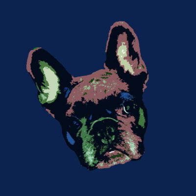 Pop Art Style image of a French Bulldogs face tilted left on blueberry hill background