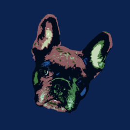 Pop Art Style image of a French Bulldogs face tilted right on blueberry hill background